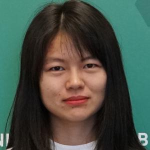 Wang, Jie